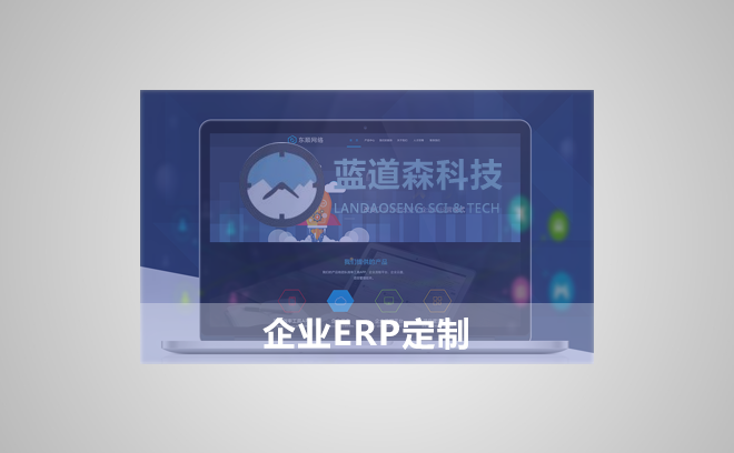 企业erp软件开发/软件服务