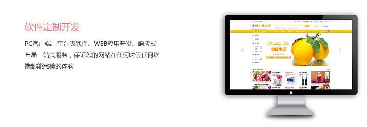 软件定制.jpg