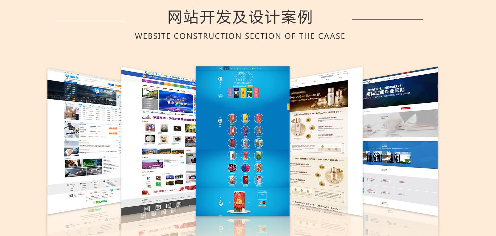 网站设计案例.png