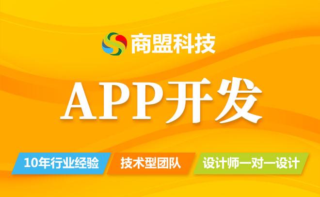 APP开发/app定制,电商app