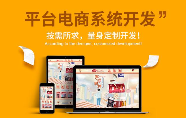 电商网站 电商平台 电商系统 开发